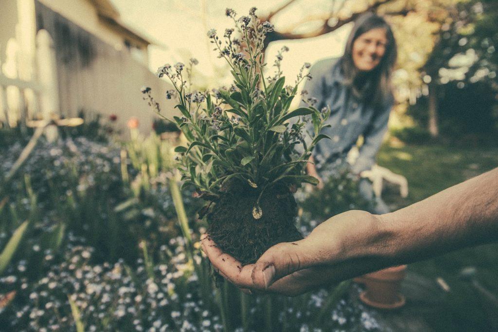 une personne tient une fleur plantée en terre, une femme sourit en arrière-plan